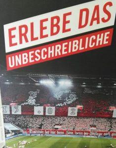 1.FC Köln im Stadion