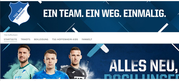 Screenshot Amazon Store TSG Hoffenheim
