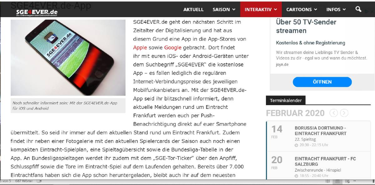 Screenshot der Website sge4ever.de