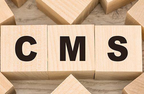 CMS: Welche Systeme wählen die Profifußballclubs in der 1. und 2. Liga für die Online-Offensive?